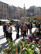 Plaza Bibarramblas, Granada's most central square, with flower stalls and sidewalk cafes.