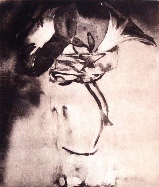 Beatriz Taillefer Málaga